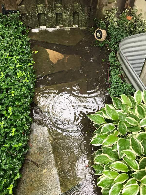 Milieu drainage problems